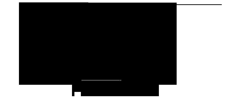 dinamicroll_frigo2_схема.png