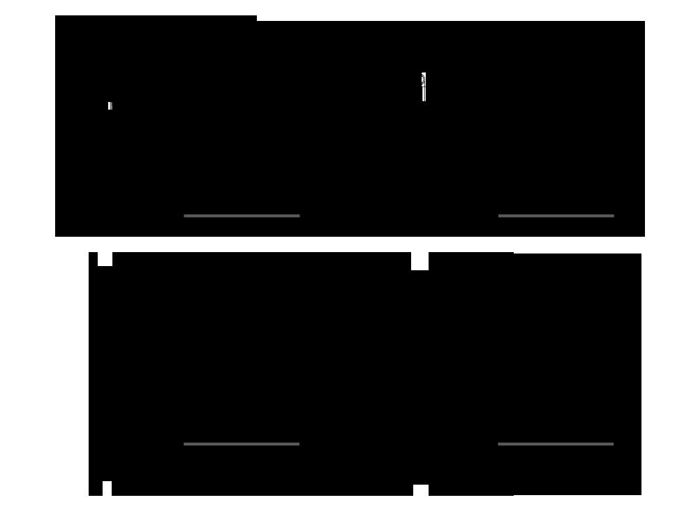 dinamicroll_basis_схема.png