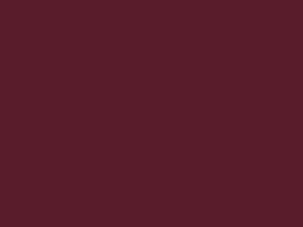 RAL 3005 бордовый (стандартный)